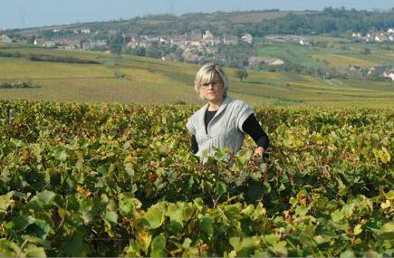 Feuillat-Juillot-Vigneronne